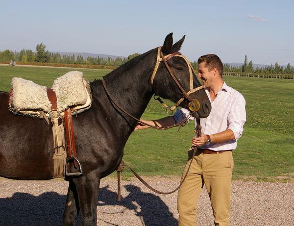 Nicolas audebert cheval des andes