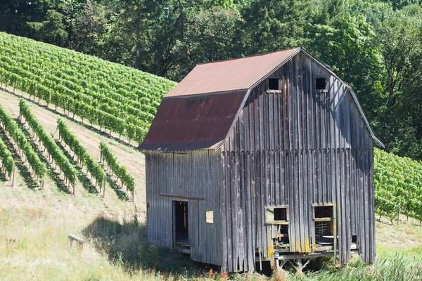 Colene Clemens Winery: Welcoming fire for chilly guests