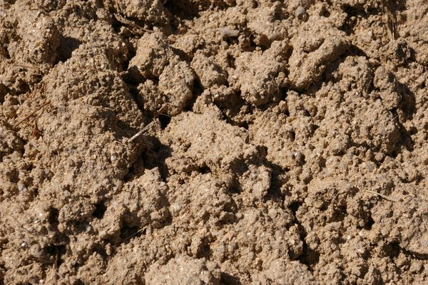 Jamie goode 39 s wine blog some thoughts on terroir for Why are soils different