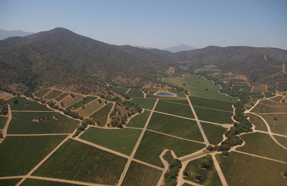 The Casablanca Valley, a(relatively) cool-climate Chilean wine region ...