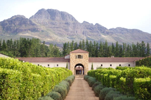 the 120 hectare stellenbosch estate with 50 hectares of vineyards: www.wineanorak.com/southafrica/waterford.htm