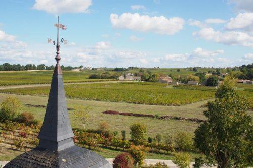 Alternative Bordeaux 5 Natural Wine At Chteau Peybonhomme Ctes De Blaye